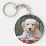 Golden Doodle Puppy Keychain