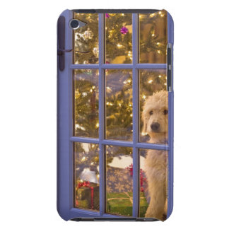 Golden Doodle puppy looking out glass door with Barely There iPod Cover