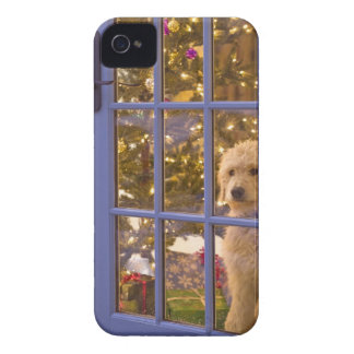 Golden Doodle puppy looking out glass door with iPhone 4 Case