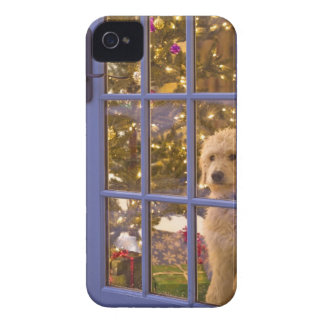 Golden Doodle puppy looking out glass door with iPhone 4 Cover