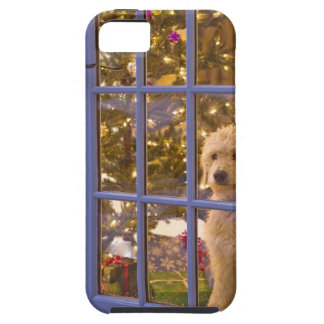 Golden Doodle puppy looking out glass door with iPhone SE/5/5s Case
