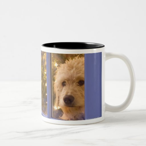 Golden Doodle puppy looking out glass door with Coffee Mug