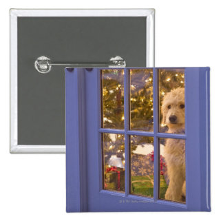 Golden Doodle puppy looking out glass door with Pinback Button