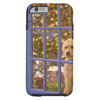Golden Doodle puppy looking out glass door with Tough iPhone 6 Case