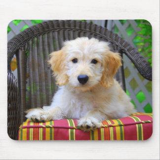 Golden Doodle Puppy Mousepad