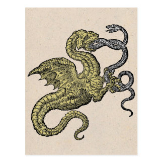 Golden Dragon and Silver Snake Postcard