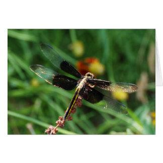 Golden Dragon Wings Macro Card