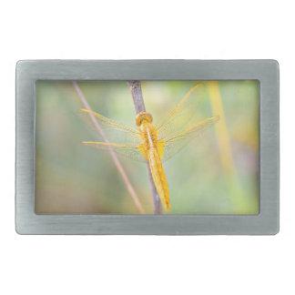 Golden Dragonfly Belt Buckle
