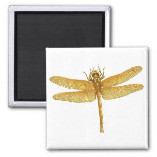 Golden Dragonfly Magnet