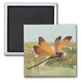 Golden Dragonfly 2 Inch Square Magnet
