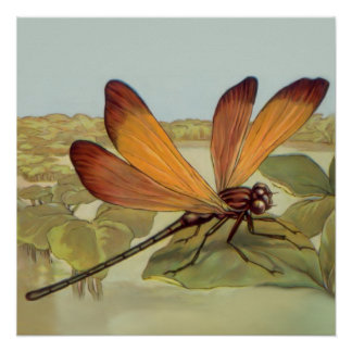 Golden Dragonfly Posters