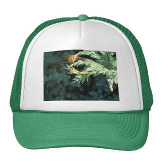 Golden Dragonfly Trucker Hat