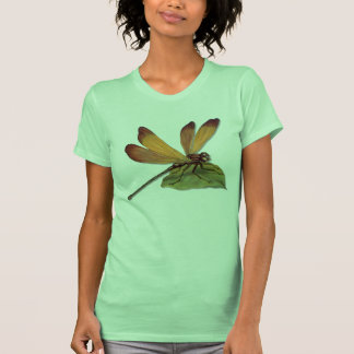 Golden Dragonfly Shirts