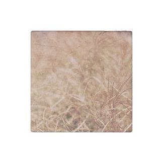golden dry sedges field stone magnet