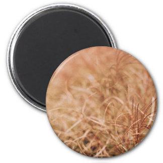 golden dry sedges field 6 cm round magnet