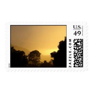 Golden Dusk Postage