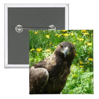 golden eagle 1 pinback buttons