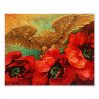 Golden Eagle and Poppies Vintage Print Photo Print