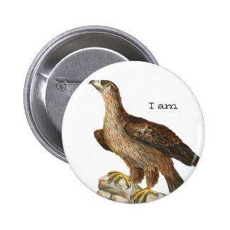 Golden Eagle - Aquila chrysaetos Buttons