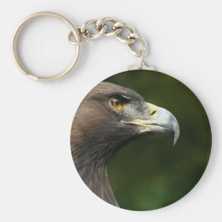 Golden Eagle Aquila Chrysaetos Keychain