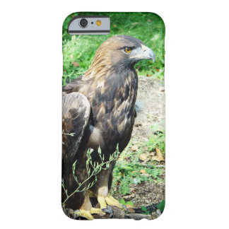 Golden Eagle Barely There iPhone 6 Case