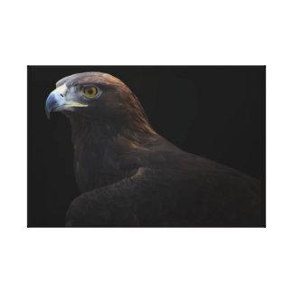Golden Eagle bird wrapped canvas print