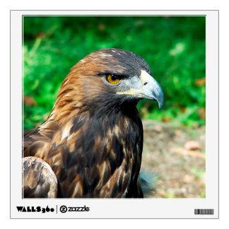 Golden Eagle Close Up Wall Sticker