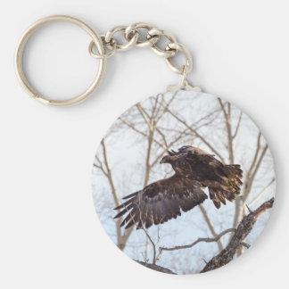 Golden Eagle in Flight Key Chain