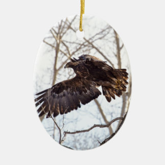 Golden Eagle in Flight Double-Sided Oval Ceramic Christmas Ornament