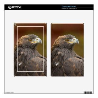 Golden Eagle looking over shoulder Kindle Fire Decals