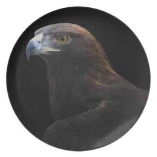 Golden Eagle portrait plate