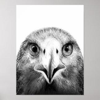 Golden Eagle Sketch Poster (Black and White)