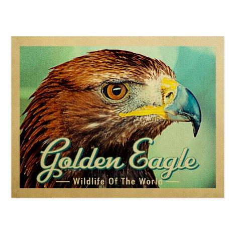 Golden Eagle - Wildlife of the World Bird Postcard