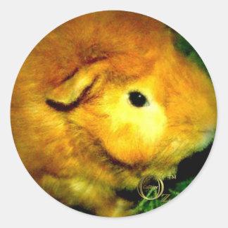 Golden Ernie Classic Round Sticker