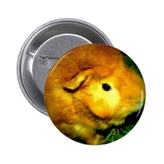 Golden Ernie Pinback Button