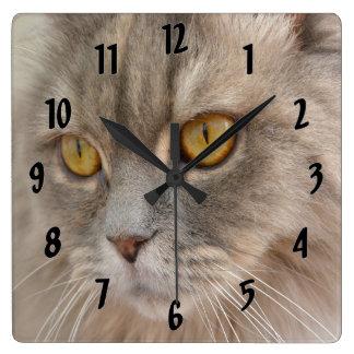Golden Eye Grey Persian Cat Square Wall Clock