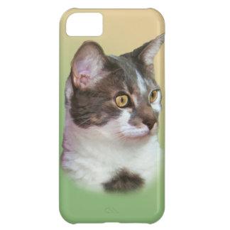 Golden-eyed Cat iPhone 5 Case Mate Case