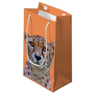 Golden Eyes Gift Bag