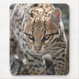 Golden Eyes Mousemat Mouse Pad