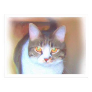 Golden Eyes postcard