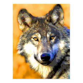 Golden Eyes (Wolf) Postcards