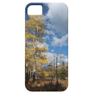 Golden Fall by NoCoPho iPhone SE/5/5s Case