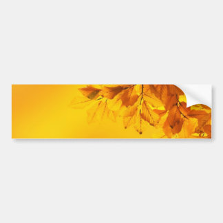 Golden Fall Leaves Background Bumper Sticker
