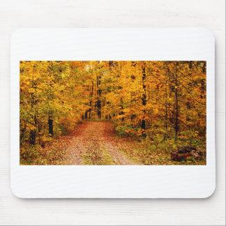 Golden Fall on St Joseph Island Mouse Pad