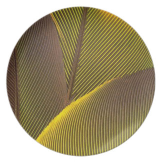 GOLDEN FEATHERS BY AES DINNER PLATE