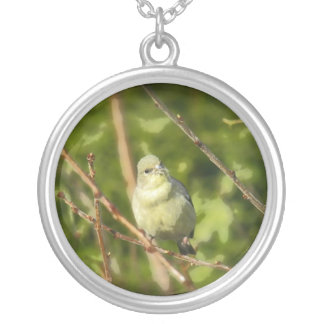 Golden Finch Simplified Necklace