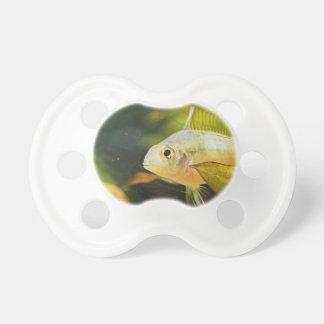 Golden Fish in Aquarium Pacifier