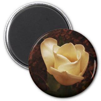 Golden Flower Magnet
