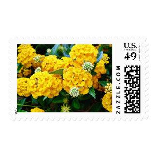 Golden Flower Stamp