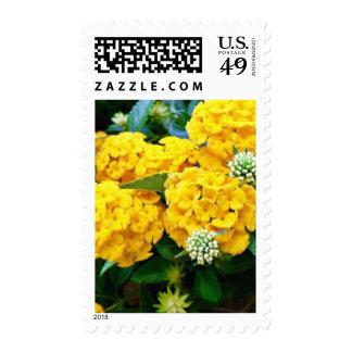 Golden Flower Postage